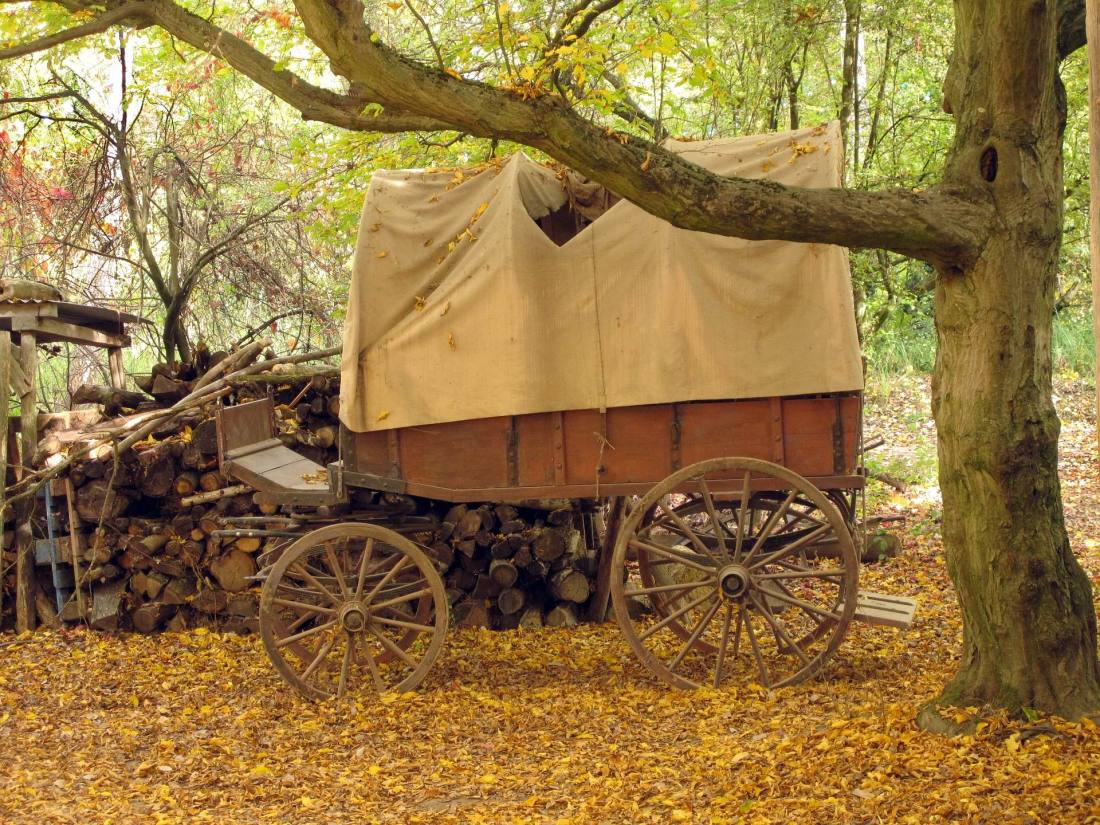 COVERED WAGON - John-Silver -- PX